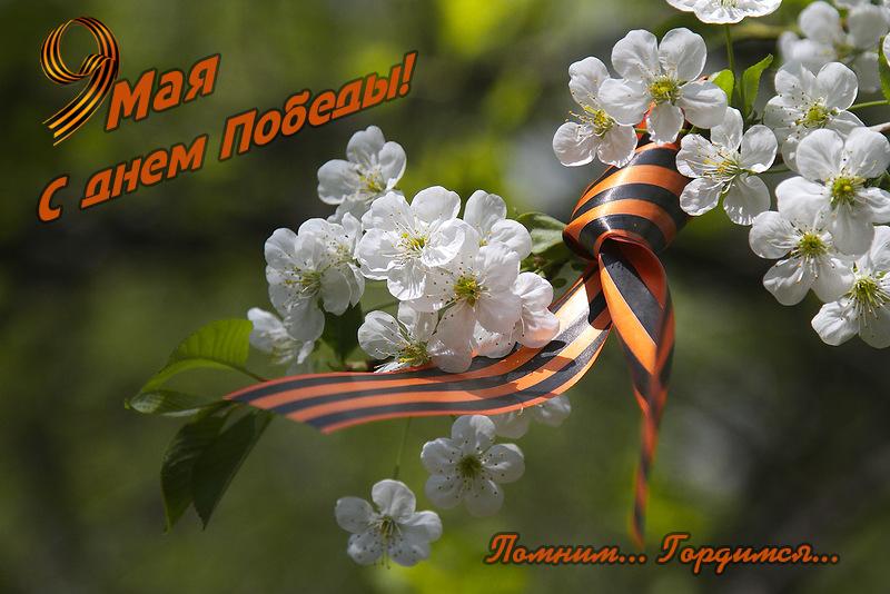 открытка-1